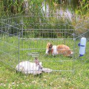 Ohrádka kovová pro králíky 6 stran/60x63cm